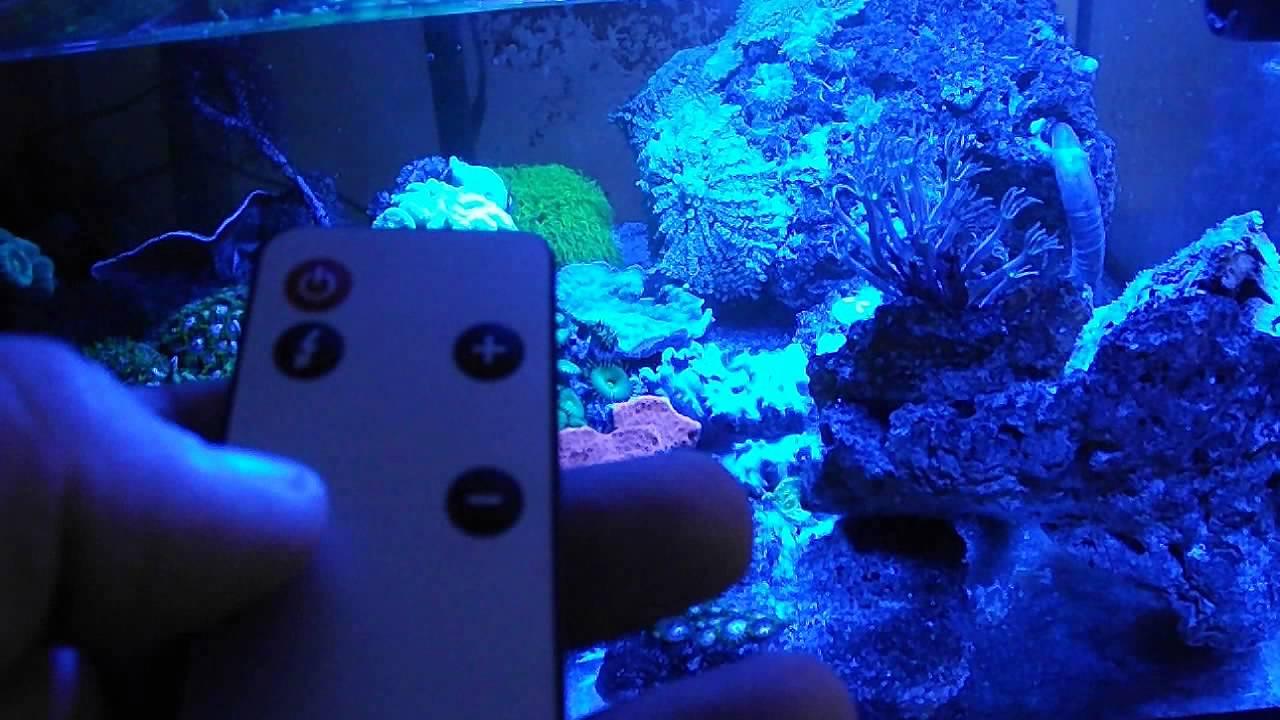 Rampe led lumivie np22 pour aquarium en mode orage youtube for Aquarium vpc