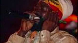 ASSASSINATOR SOUND (LOVE MAMA) ft CAPLETON