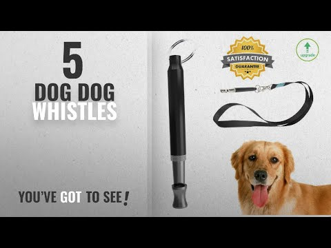 top-10-dog-dog-whistles-[2018-best-sellers]:-dog-whistle-to-stop-barking---barking-control