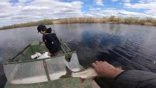 Рыбалка с Сыном,КАРАСЬ начало..Часть 1.