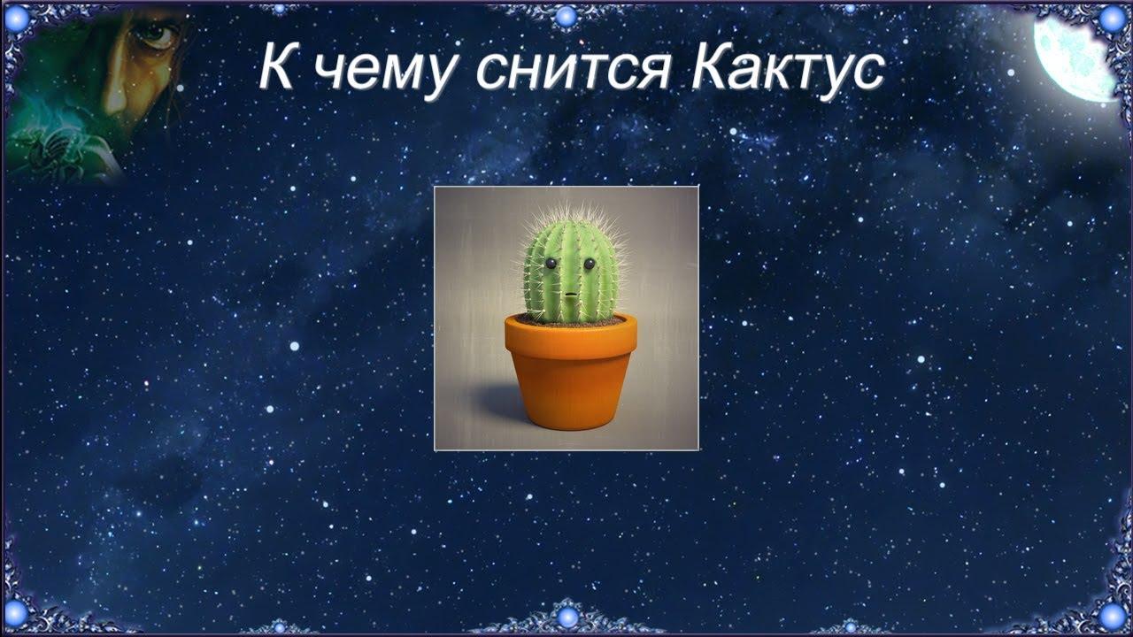 К чему снится Кактус (Сонник)