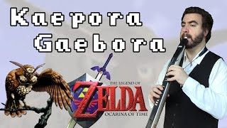 The Legend Of Zelda: Ocarina Of Time - kaepora Gaebora Ewi Cover