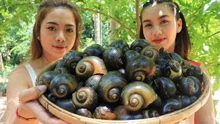 Yummy cooking field snail recipe - Cooking skill
