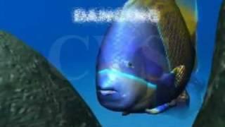 Panchatantra 3D Animation English stories