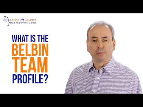 What Is The Belbin Team Profile? Project Management In Under 5