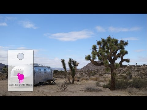 Palm Springs and Joshua Tree National Park