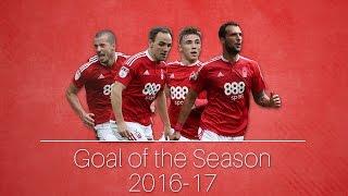 Goal of the season 2017
