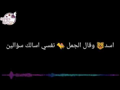 كلمات اغنية الاسد والجمل غناء علي فاروق Youtube