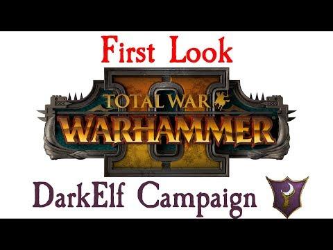 FIRST LOOK DARK ELF CAMPAIGN!