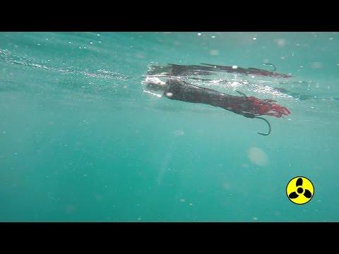 Underwater Video of Sportfishing Lures