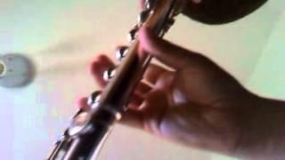 the honeymoon reel silver flute