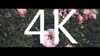 VIDEOGRADE app Soft Light Color Grade Tutorial Filmic Pro 4K