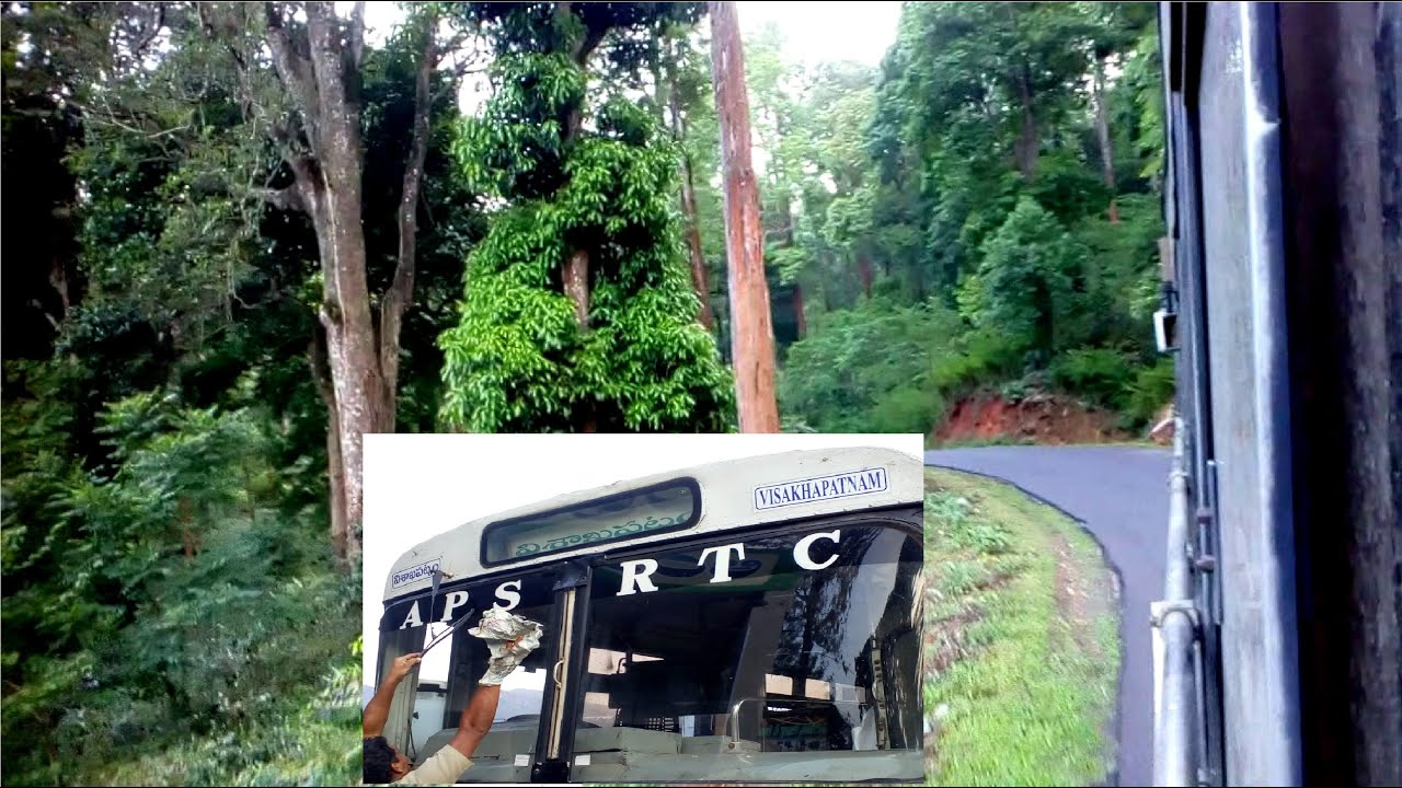 Beautiful Forest Road in Andhra Pradesh
