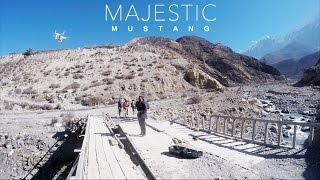 Majestic Mustang Trip | Amazing Drone Shots (Vlog #14)