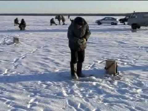 русская рыбалка 3 озеро белый амур