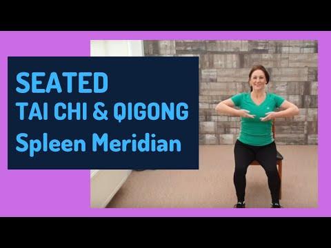 SEATED TAI CHI AND QIGONG - Spleen Meridian Exercises (2019)