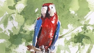 Advancing with Watercolor: Patterns and Parrots in the Rain Forest