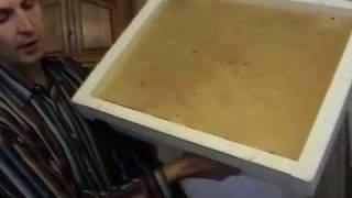 Как  сделать улей (пчеловодство для начинающих)1 часть