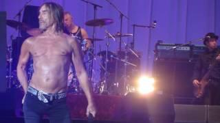 Iggy Pop - Gardenia Live @ Rock En Seine