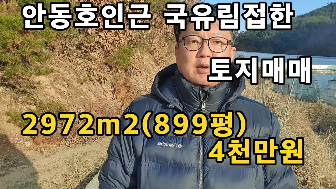 경북 안동시 안동부동산 안동땅 시골땅 매매