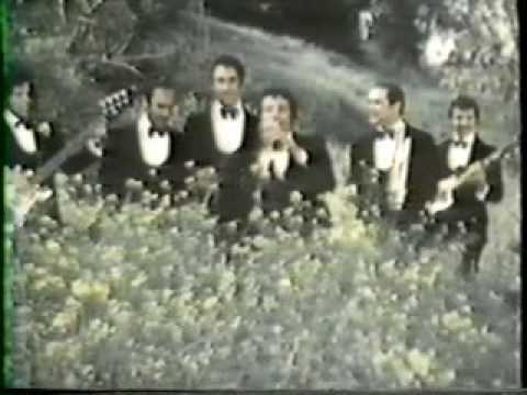 Herb Alpert Route 101 Video 1982 from the Album Fandango