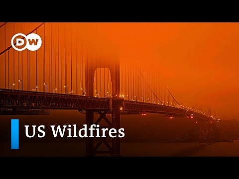 Deadly wildfires sweep across US west coast | DW News