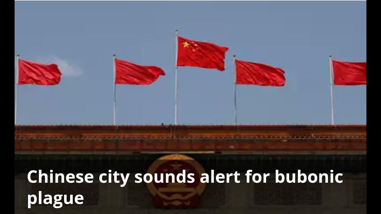 BREAKING: CHINA NEXT OUTBREAK BUBONIC PLAGUE? - YouTube