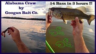 Googan Bait Krackin Craw Catches Big Bass