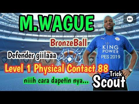 M  Wague PES 2019