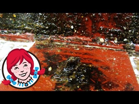 Inside Wendy's After Hours - QTWC
