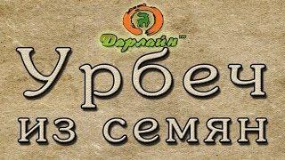 Отзыв о  продукте Урбеч от комрании Дарлайн