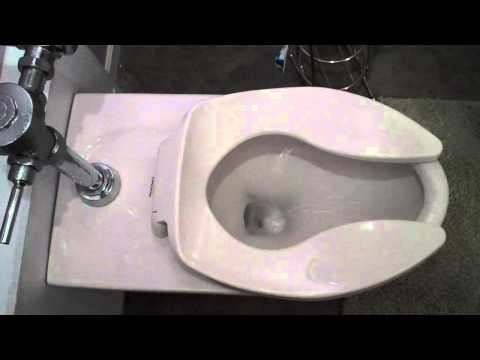 Commercial Flush Toilet In Residential, Final Improvements In Plumbing