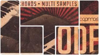 Loopmasters - Vintage Rhodes