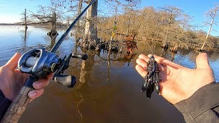 Searching For BIG FISH In Flooded Forest (found one) || Winter Bass Fishing Freezing Cold Water