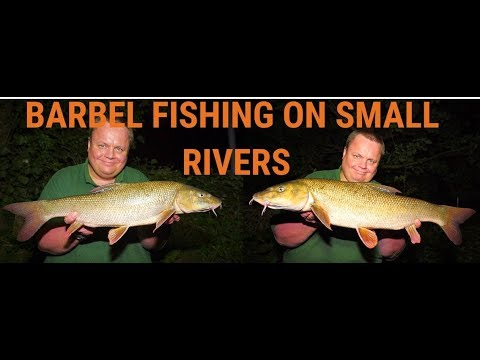 Barbel Fishing On The River Blackwater (Video 112)