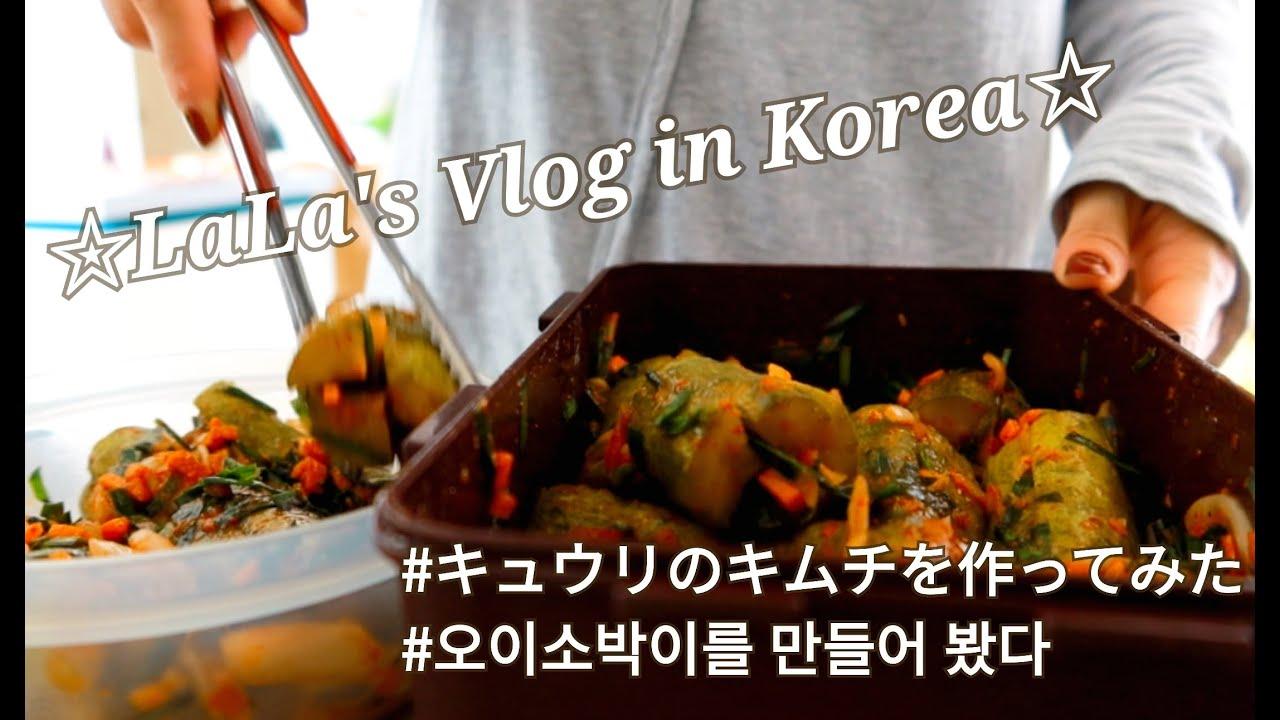 【在韓歴14年目Vlog】オイソバギ(きゅうりのキムチ)作ってみた /義両親とお出かけ♪ #092