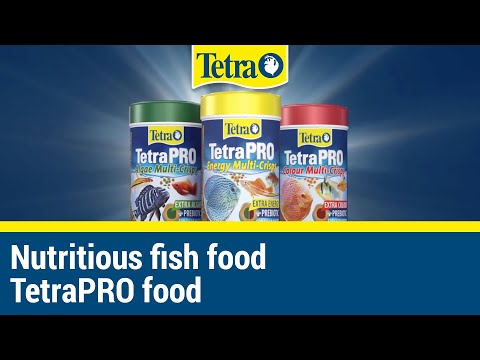 Nutritious Aquarium Food I TetraPRO Fish Food