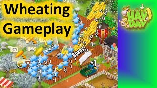 Hay Day 2019 - Wheating Gameplay!