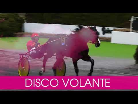 Välkommen till Elitloppet 2020 Disco Volante!