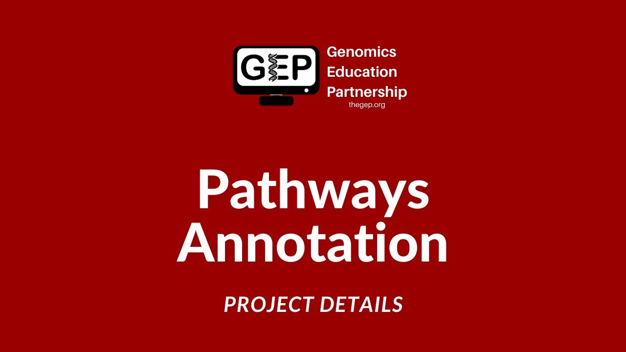 Download GEP | Pathways Annotation - Project Details