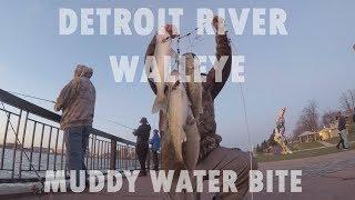 MUDDY WALLEYE Jigging- Detroit River Walleye Shore Fishing 2019