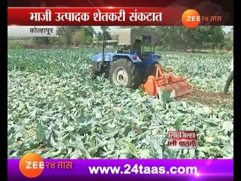 Kolhapur | Farmer Destroying Farm With Rotavator For No Price On Crops In Market