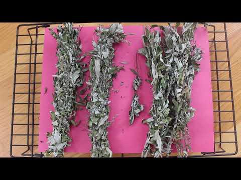 Naturopathic Medicine    Smudge Sticks & Artemisia vulgaris & Ways to Preserve Herbs