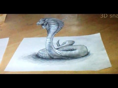 Anamorphic illusion, D...