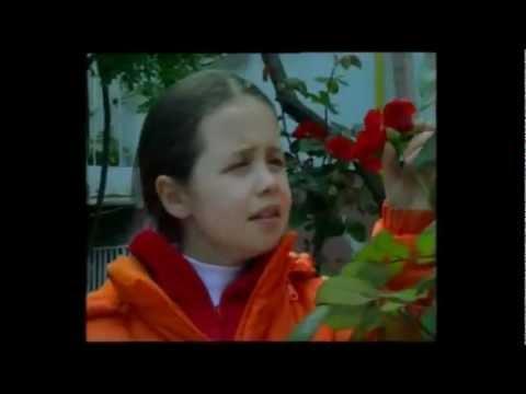 MEDINA-turski film sa prevodom