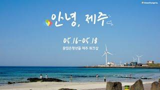 꿈많은청년들 제주 워크샵✈️(feat. 흔하지 않은 챗…