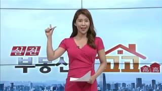 [부동산 이슈&현장] 정부 회심의 카드 '9.13 부동산 대책' 주요 내용은? - 이성우