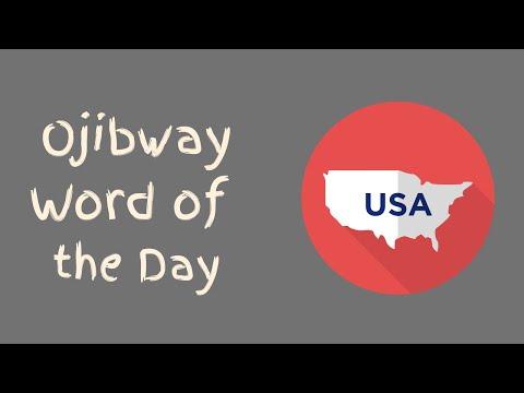 #65 - Ojibway Language - United States