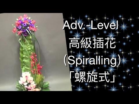 "Advanced Flower Arrangement ""Spiralling skill"" 高級插花「螺旋式」Adv-20-B70"