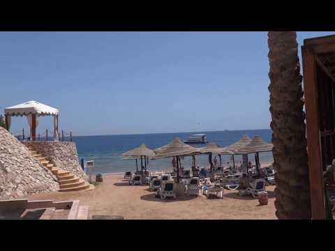 Видео репортаж 17.04.2017 Что на пляже?  Египет . Отель Island View Resort 5* Sharm-El-Sheikh